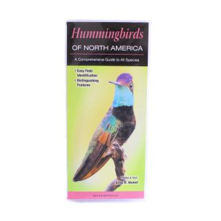 Hummingbirds of North America, A Comprehensive Guide to All Species - by Greg R. Homel